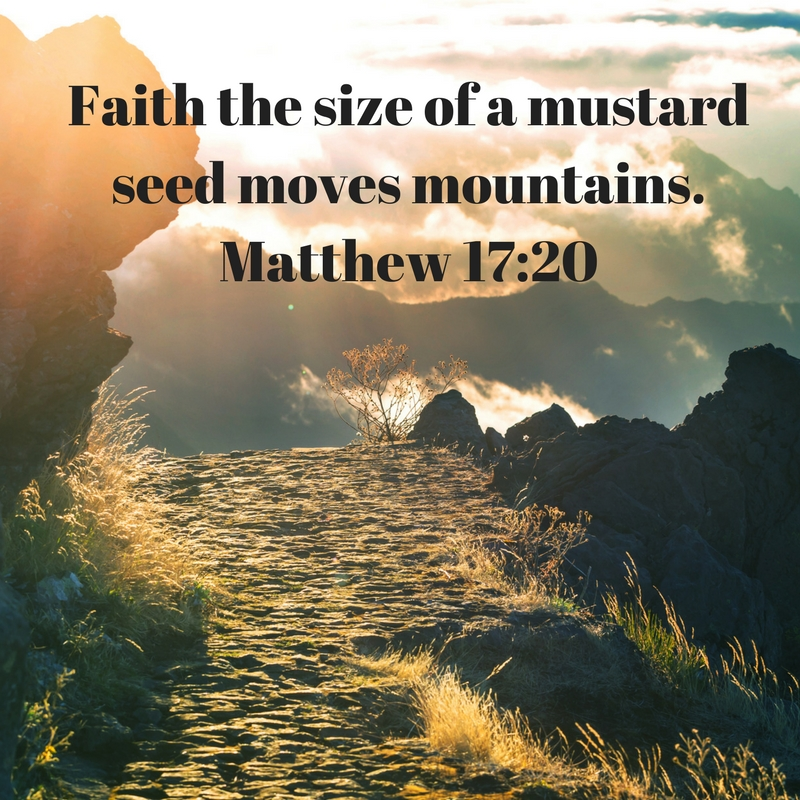 faith-the-size-of-a-mustard-seed-moves-mountains-matthew-17_20